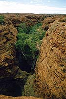 Nebental des  Kings Canyon, NT