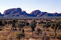 The Olgas, NT